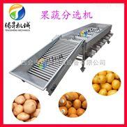 TS-F250-水果分选机 苹果 酸李子分选机