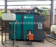挂面烘干(食品烘干)环保锅炉