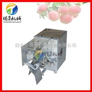 TS-P50-厂家独销自动苹果去皮机 水果去核切瓣多功能 水果削皮机 切果器