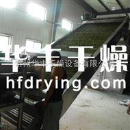 DWT青翘专用干燥设备