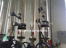 制革廠鍋爐蒸汽流量計