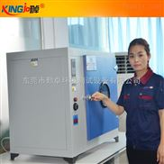 電熱烘箱 恒溫試驗箱 鼓風干燥老化箱