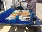 黄花鱼裹浆机