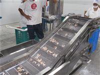 BF200大虾包冰衣机设备