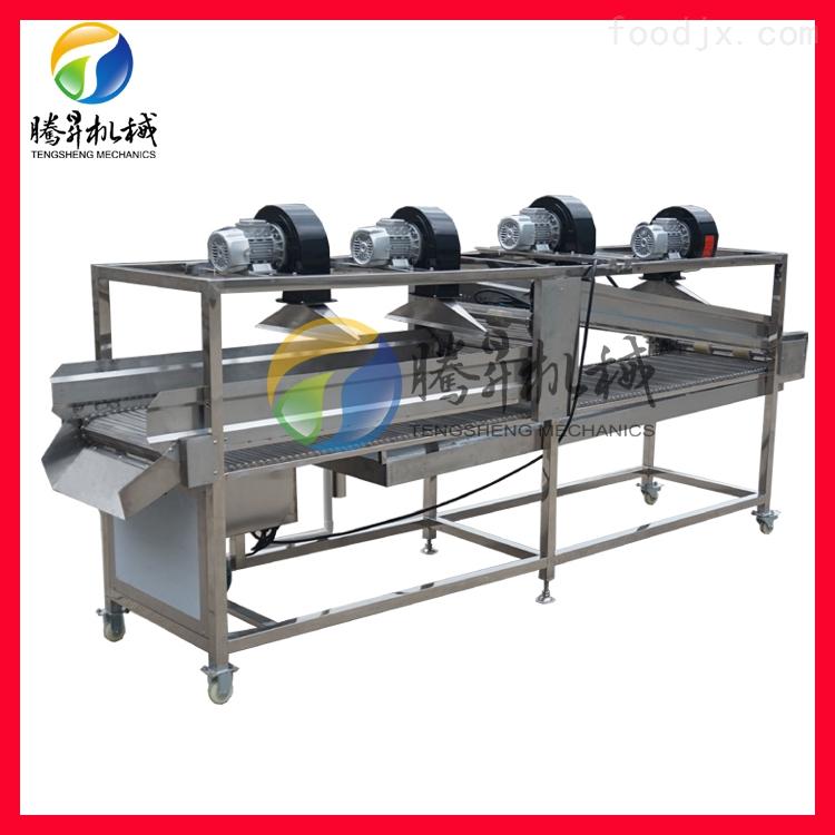 净菜生产翻转式风干机 水果蔬菜风干设备