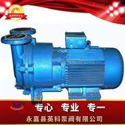 SKA系列--水环式真空泵