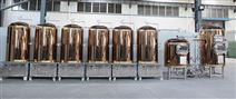 自酿啤酒设备价格报价