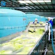 全自动净菜加工流水线大型果蔬机械