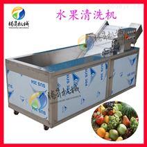 多功能气泡蓝莓草莓清洗机 叶菜商用洗菜机