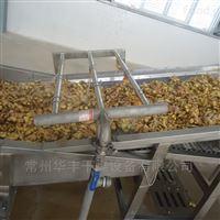 生姜干燥机厂家-华丰干燥