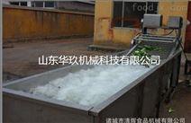 大型果蔬氣泡清洗機設備
