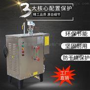小型不锈钢蒸汽发生器18kw全自动