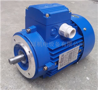 0.55KW清华MS7122紫光三相异步电机