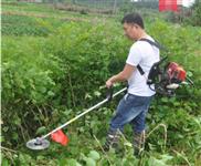 土豆种植松土机 小型汽油松土机 6.5马力汽油微耕机
