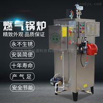 旭恩全自動高效小型天然氣蒸汽發生器
