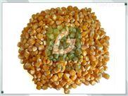 当季鲜玉米粒脱皮机东北冷库速冻玉米去皮机