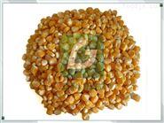 鲜食玉米脱皮机,速冻水果玉米粒剥皮机