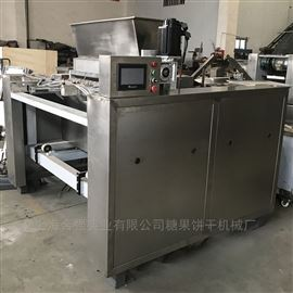 HQ-CK1000型全自动钢带炉曲奇成型设备 PLC曲奇饼干机械