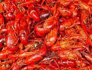 麻辣小龙虾小型油炸生产线设备价格