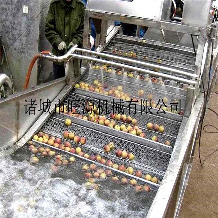 全自动桃子清洗机