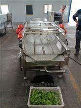 国内蔬菜气泡清洗机设备