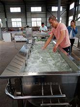 蔬菜加工设备气泡涡流清洗机