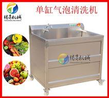 水果蔬菜气泡清洗机 全自动臭氧消毒洗菜机