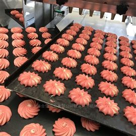HQ-400双斗曲奇糕点生产线 双色曲奇饼干成型机