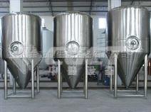 CGET中小型啤酒厂酿酒设备