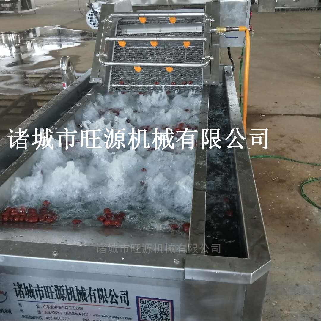 高质量蔬菜网链气泡清洗机