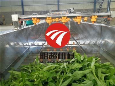 支持定制诸城明超机械生产净菜设备用于那些方面