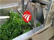 QZM-6-连续式蔬菜洗菜机厂家规格报价