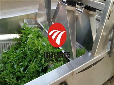 明超介绍可以清洗水果 蔬菜的气泡清洗机