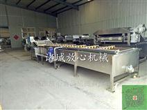 红枣专用清洗机价格