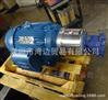 进口美国Rotor-Tech泵GS-1100系列齿轮泵