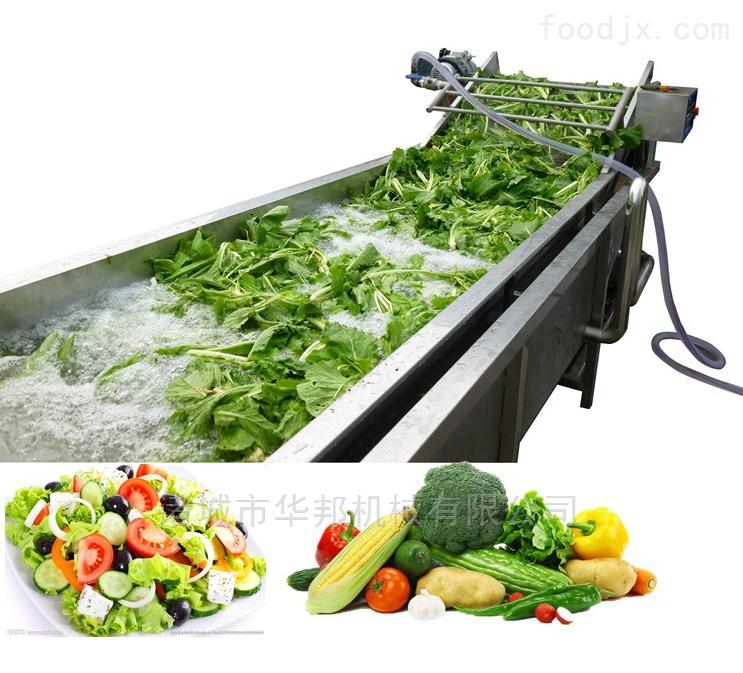 气泡冲浪蔬菜清洗机  连续式叶类洗菜机