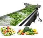 小型气泡式果蔬清洗机 水果蔬菜清洗设备