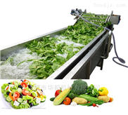 HB3500LJ-全自动蔬菜清洗机 气泡清洗设备商用