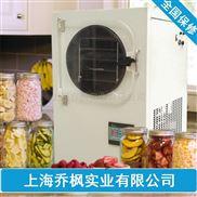 小型原位冷冻干燥机