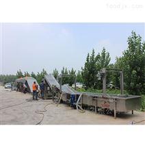 中草药清洗烘干生产线 全自动多层烘干机