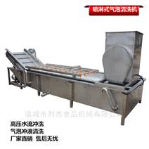 辣椒荔枝高压喷淋式自动气泡清洗机 洗果机