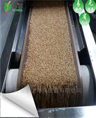 微波燕麦熟化设备连续24小时生产