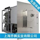 QFN-DGJ-GLZ系硅油原位冻干机设备
