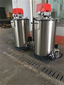 0.2吨/小时蒸汽量燃气蒸汽锅炉