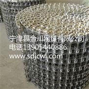 厂家定做 不锈钢输送网带 金属传动链条链板