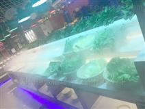 生鲜超市果蔬加湿器
