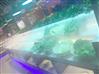生鮮超市果蔬加濕器