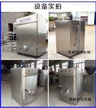 SYX-50农秾贵州腊肉各种型号小型熏肉烟熏箱