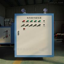 燃煤锅炉改造用淄博林森环保电热锅炉