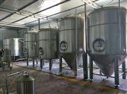 精酿啤酒发酵罐